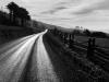 road-after-rain-northern-california